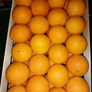 Arance grandi  cassa 16 kg