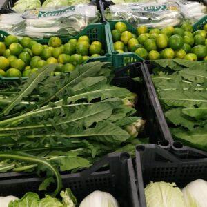 cassetta  mista solo verdura  biologica El Tamiso